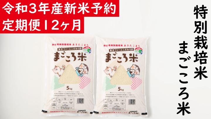 令和3年産新米予約【定期便12ヶ月】秋田県特別栽培米あきたこまち「まごころ米」10kg