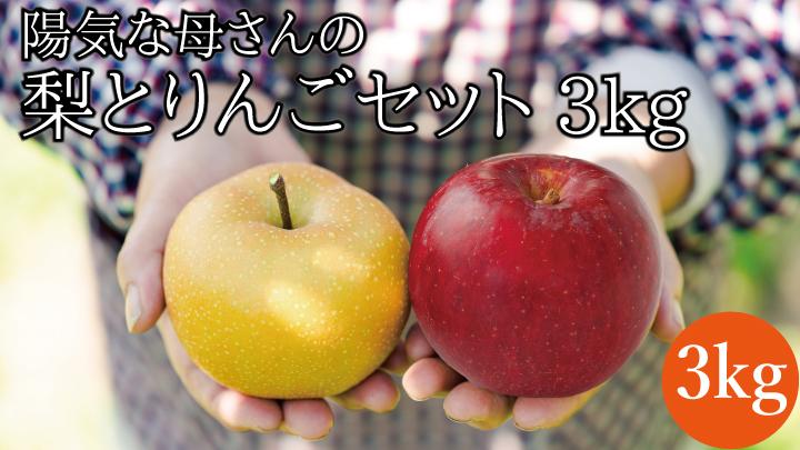 【期間限定・数量限定】旬の梨とりんごセット3kg