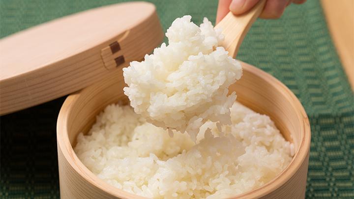 【令和3年産新米予約】さいとうさん家のあきたこまち10kg(玄米)