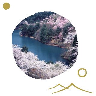 大館樹海ドームイメージ